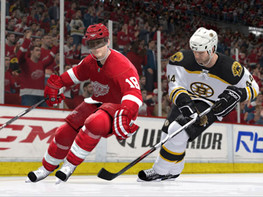 Screenshot1 - NHL 2009 download